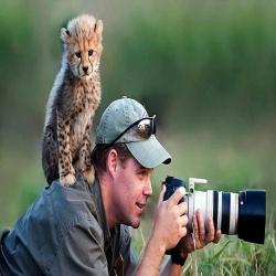 الحيوانات تختار مشاركة المصورين لحظات التصوير